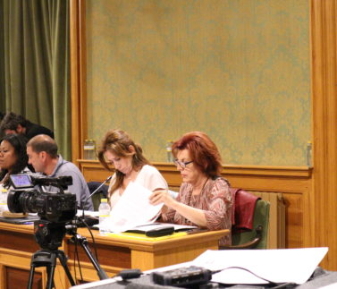 Mª Ángeles García en Pleno